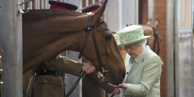 La Alfalfa de la Reina. El Marketing Gratis
