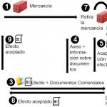 Remesa Documentaria